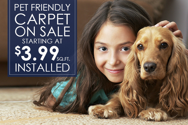 Pet Friendly Stainmaster carpet starting at $3.99 sq.ft. INSTALLED, this month at Clupper Brothers in Akron!